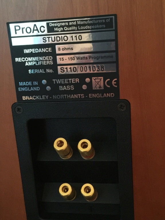 ProAc studio 110 Speakers Img_6812