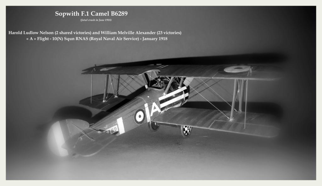 Sopwith Camel - 1/48 (kit antique de 1975) 00011