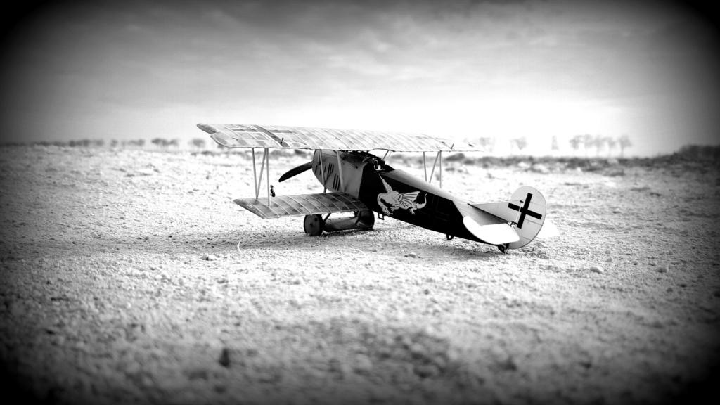 Fokker D. VII OAW - Eduard 1/48 (montage terminé) - Page 3 C0110
