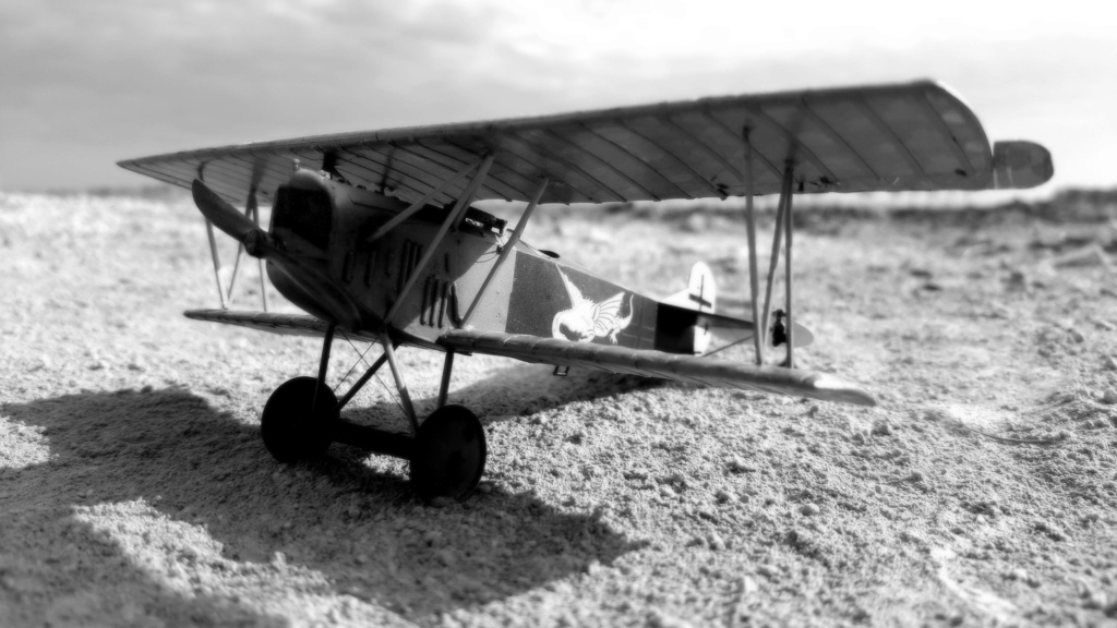 Fokker D. VII OAW - Eduard 1/48 (montage terminé) - Page 3 C0310