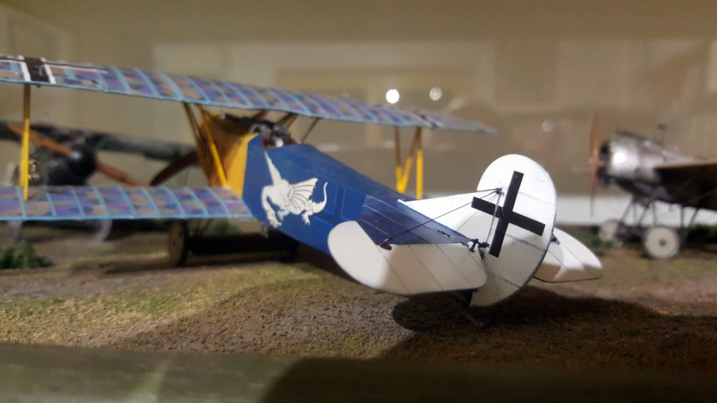 Fokker D. VII OAW - Eduard 1/48 (montage terminé) - Page 3 D0110