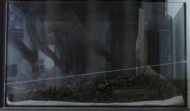 Mon projet aquarium low tech/aquascaping 5_grav10