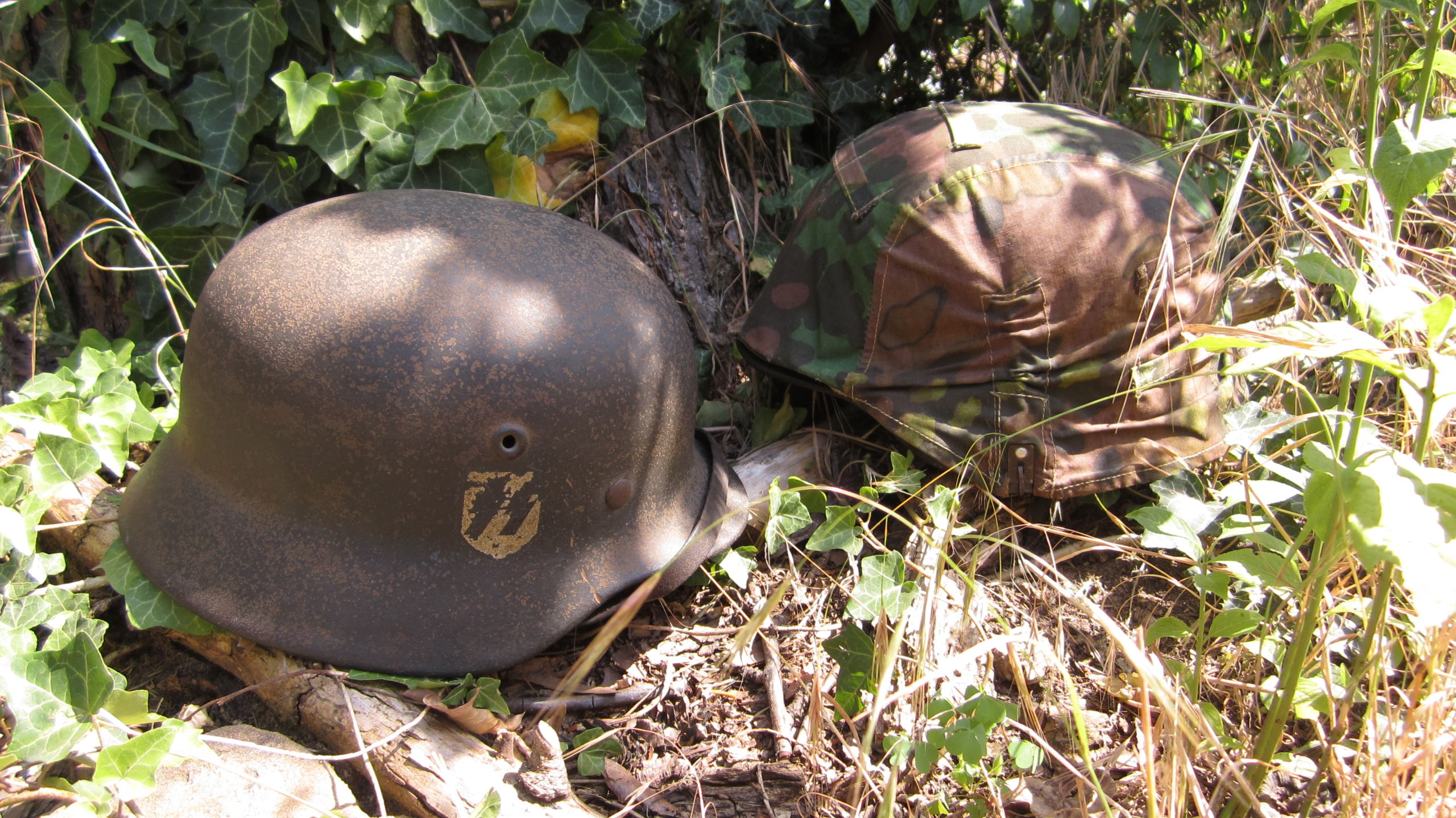Waffen SS Img_4464