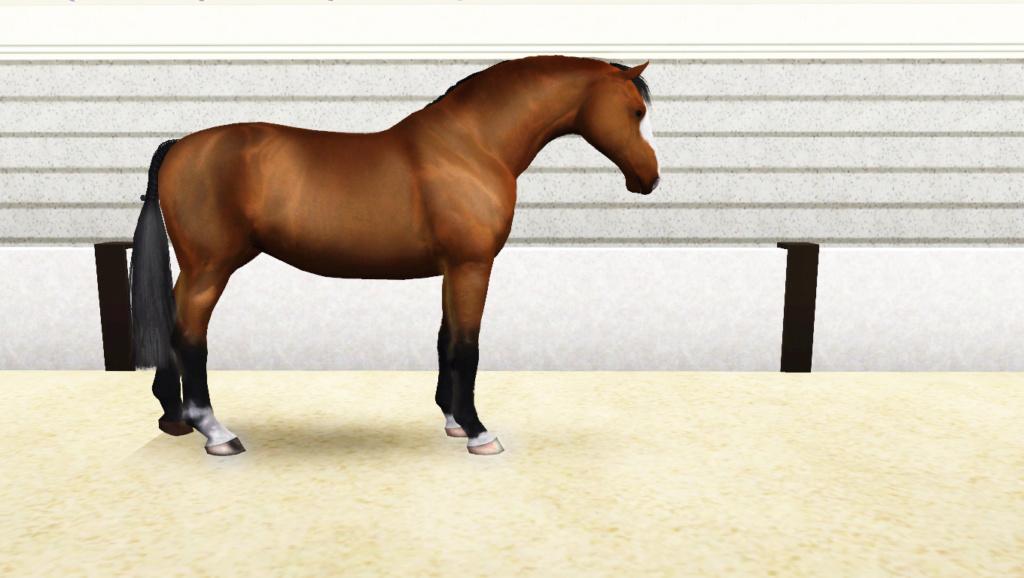 Регистрация лошадей в RHF 2 - Страница 9 Aa_210