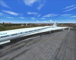 aeronaves desproporcionais 113