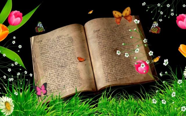 La vie du forum  - Page 21 74578510
