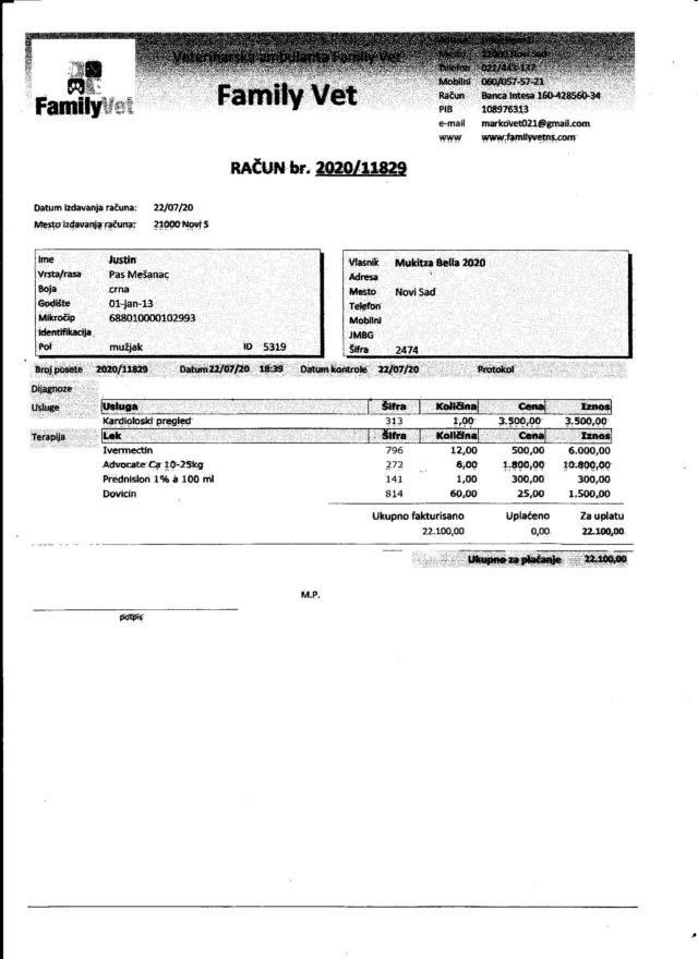 JUSTIN M-X labrador noir, taille moyenne, env. 25 kg, né 2013 Ex-Backa(BELLA)PRET/ BESOIN DE SOINS - Page 5 Factur10