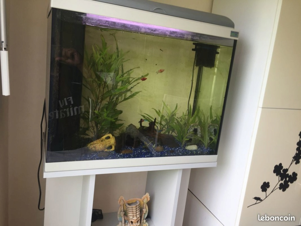 Déplacer un aquarium d'occasion E5fe4811