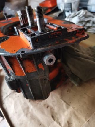 Pompa olio Oleomac 260 Img_2072