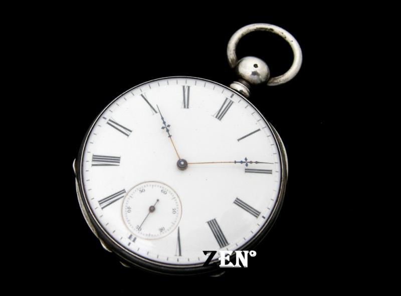 Je vais vous montrer une rareté... La montre d'Honoré Petetin horloger militant. Datent13
