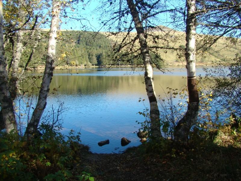 Puka et Chadka au Lac du Guéry 05_lac12