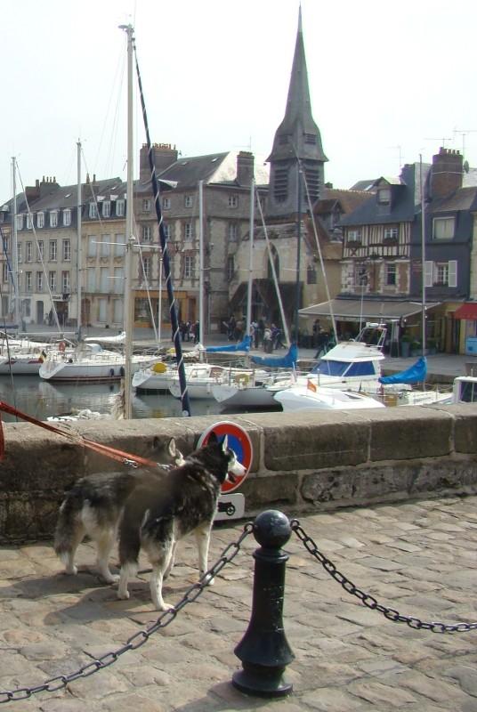 De la Normandie au Nord 05_puk15