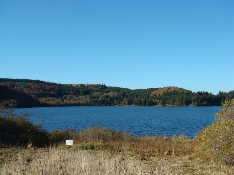 Puka et Chadka au Lac du Guéry 10_lac11