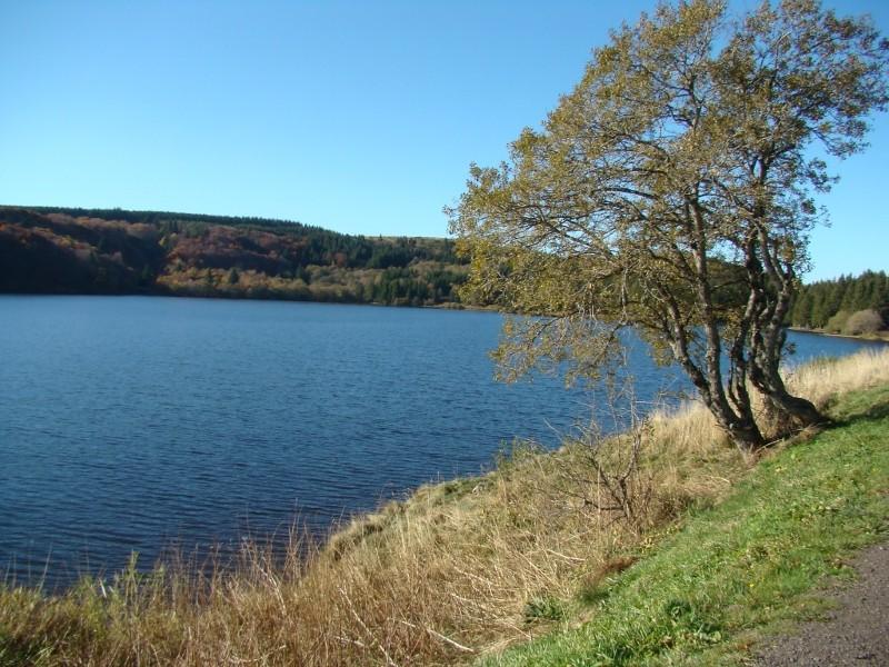 Puka et Chadka au Lac du Guéry 11_lac13