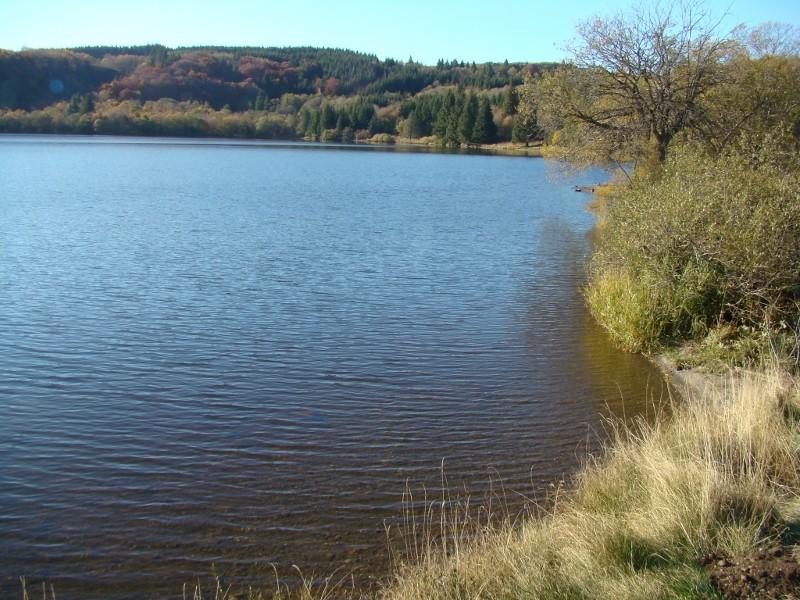 Puka et Chadka au Lac du Guéry 13_lac12