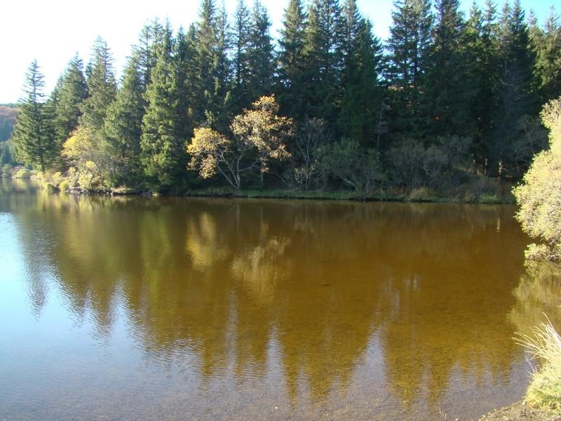 Puka et Chadka au Lac du Guéry 17_lac10