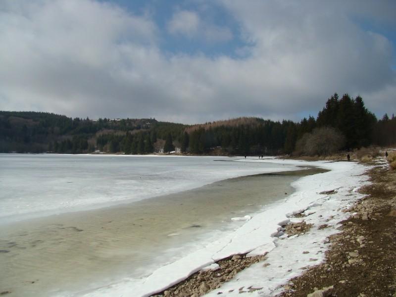 Puka et Chadka au Lac du Guéry Dsc06223