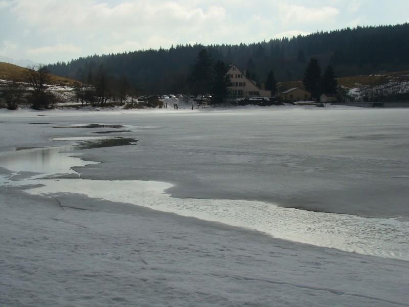 Puka et Chadka au Lac du Guéry Dsc06225