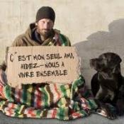 NON au kidnapping et à l'exécution des chiens sur Rennes Patiti10