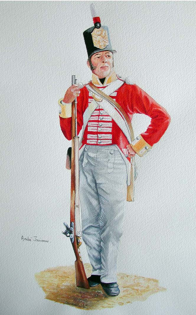L'infanterie Britannique vers 1812 Foot_a10