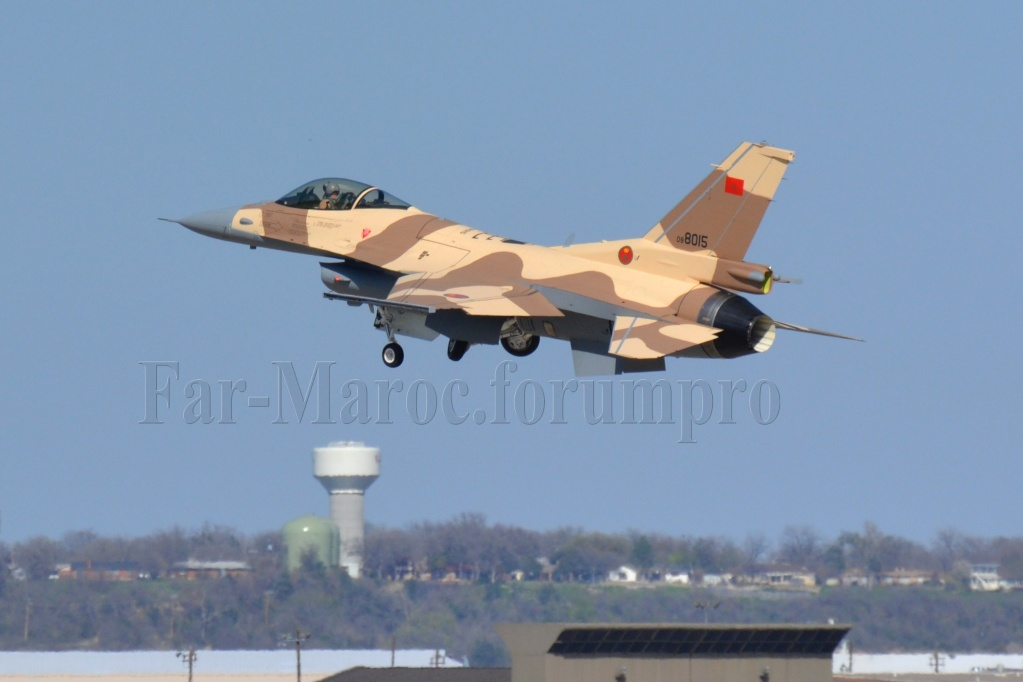 Photos RMAF F-16 C/D Block 52+ - Page 2 69580015