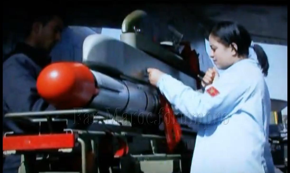 Missiles (Air-Air / Air-Sol / Air-Mer) roquettes et bombes en dotation. - Page 8 Mica_w10
