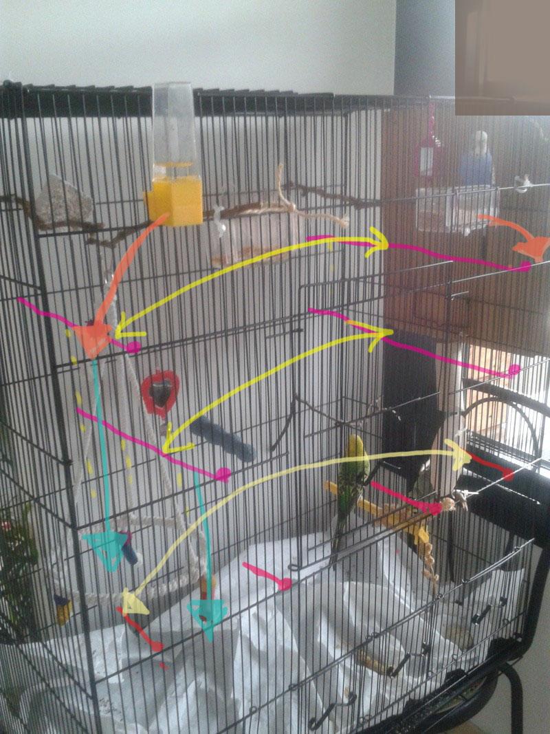 Bien organiser sa cage 2.0.  - Page 5 2012-110