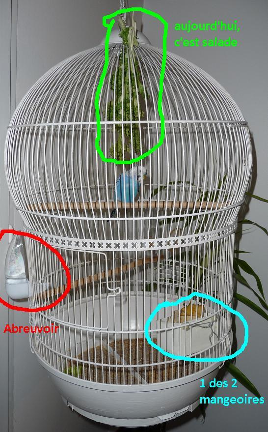 Bien organiser sa cage 2.0.  Epidau10