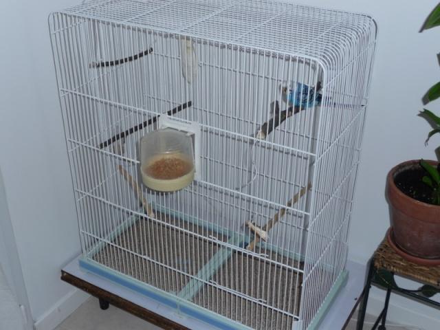 Bien organiser sa cage 2.0.  Epidau11