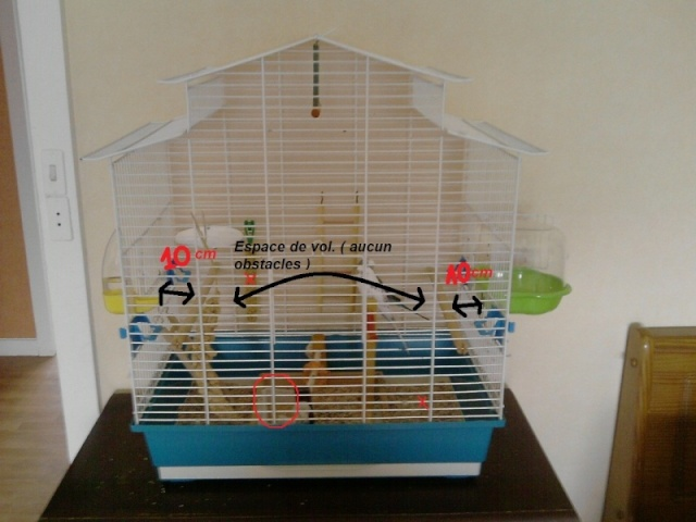 Bien organiser sa cage 2.0.  Fly10