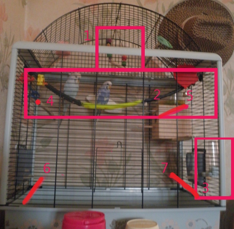 Bien organiser sa cage 2.0.  Kitkat11