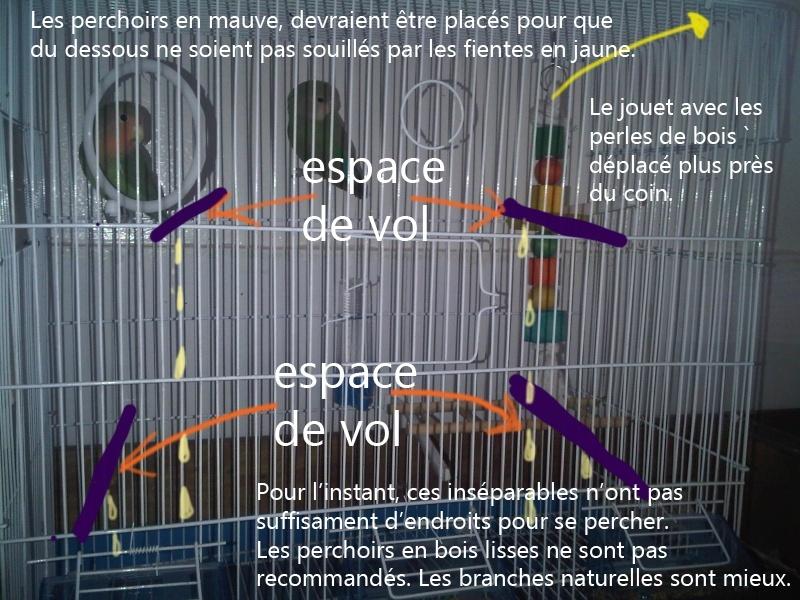 Bien organiser sa cage 2.0.  Lovebi10