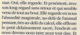 Eric Vuillard Occide22