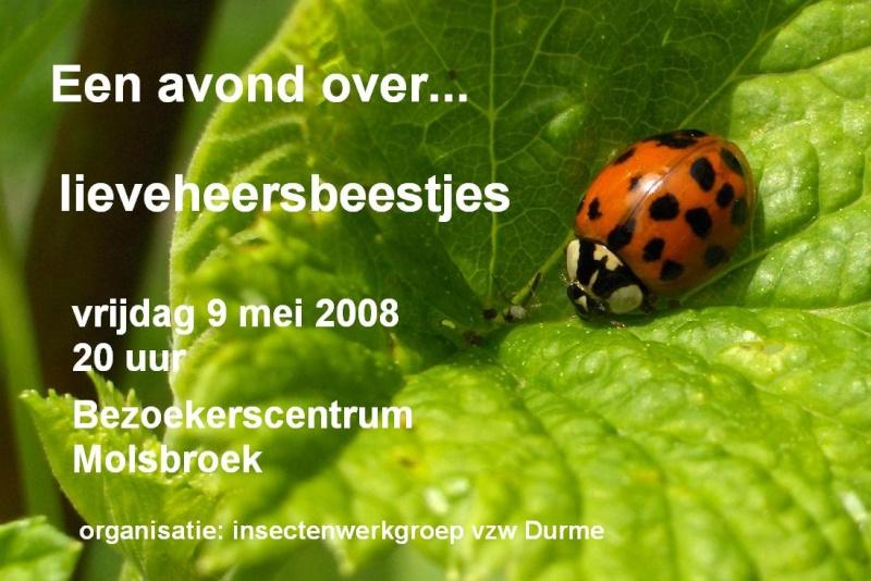 Lieveheersbeestjes Lieveh10