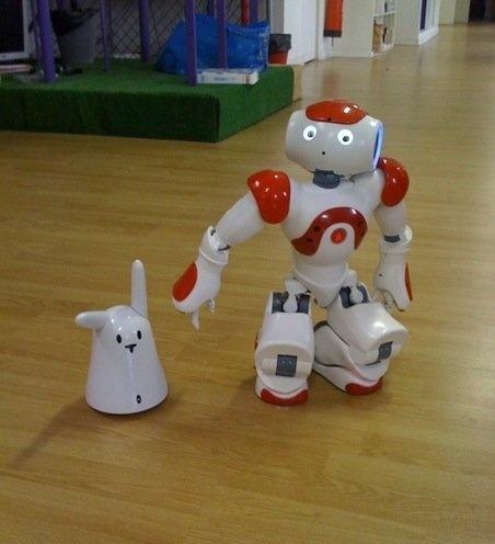 Aldebaran-robotics reprend Karotz - Page 9 Chezvi10