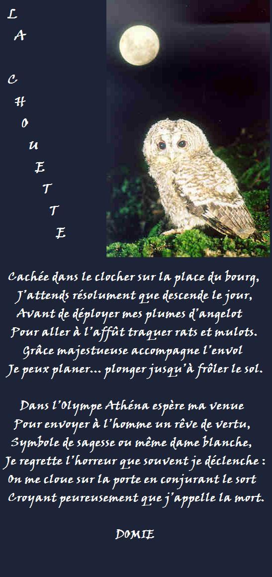 La chouette (poème sans i) La_cho10