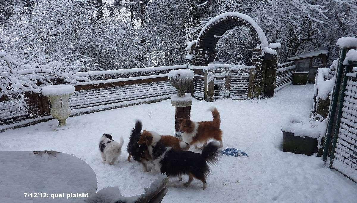 Plaisirs d'hiver 2012 00171