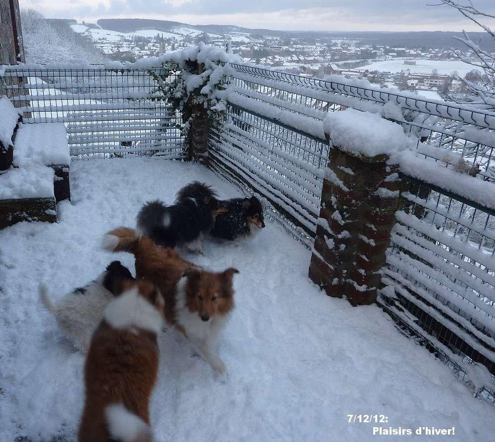 Plaisirs d'hiver 2012 01533