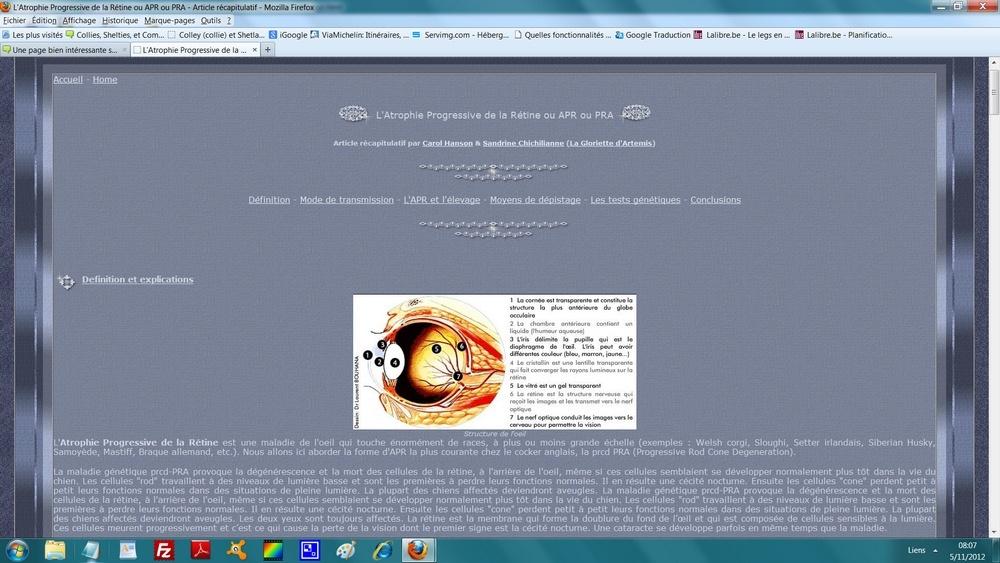 Une page bien intéressante sur  L'Atrophie Progressive de la Rétine ou APR ou PRA 175