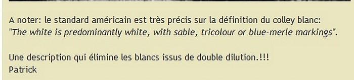 Une discussion sur le forum de collie-online. 342