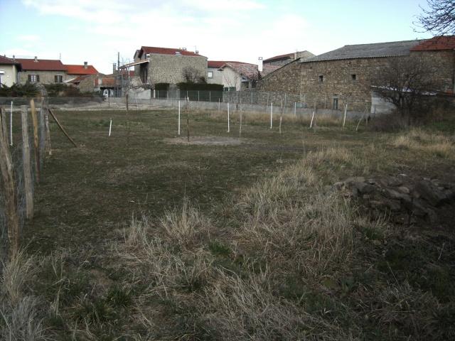 Jardin de Polgara Bild0010