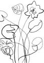 Brush Natures 03101010