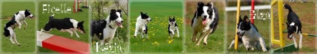 Frisbee speedy en photos + videos Bannie11