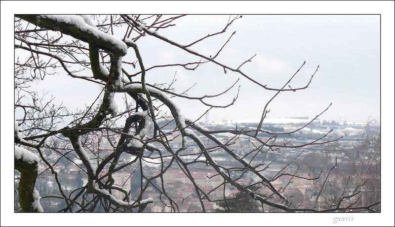 Le temps à Saint-Etienne au jour le jour (bis) - Page 7 04030824
