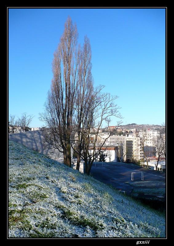 Le temps à Saint-Etienne au jour le jour (bis) - Page 7 07040825