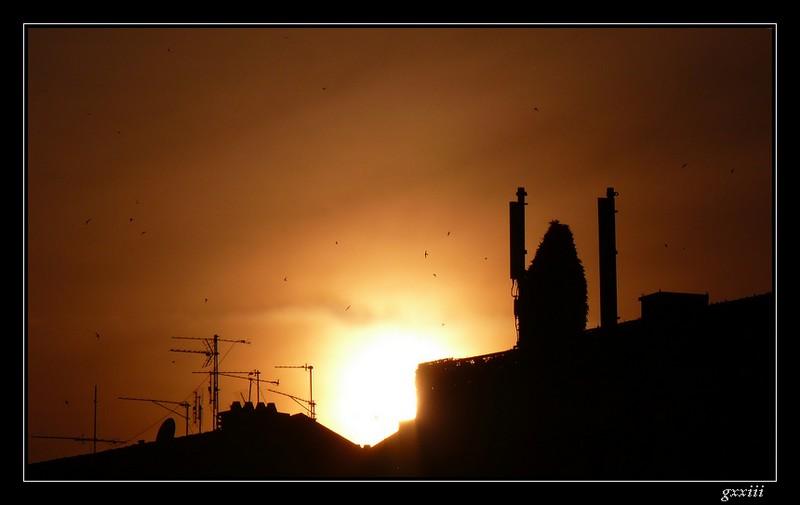 coucher de soleil - Page 5 08050818