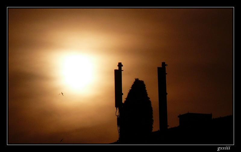 coucher de soleil - Page 5 14050816