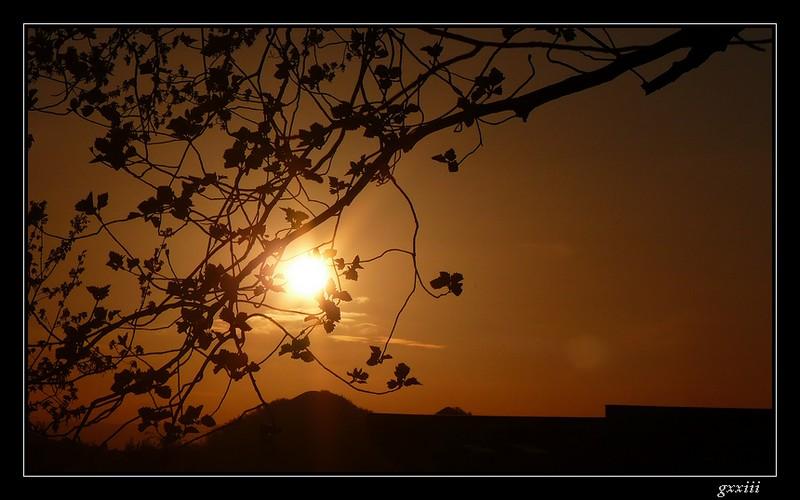 coucher de soleil - Page 4 25040811