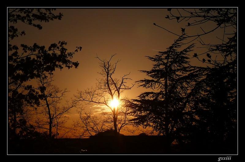 coucher de soleil - Page 4 25040812
