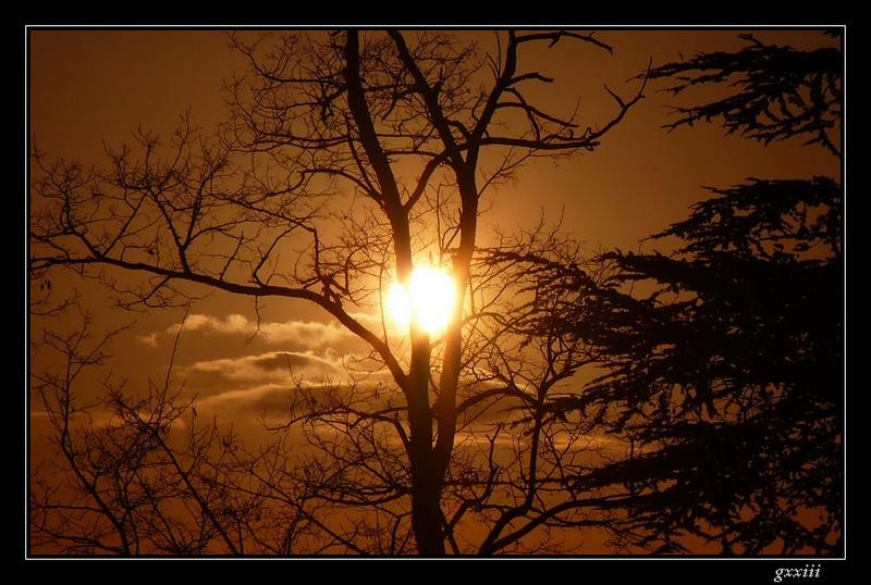 coucher de soleil - Page 4 25040813